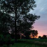 Zonnewende '15 ©Bart Batseleer
